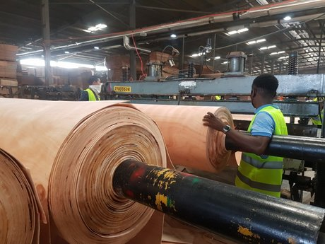 zone nkon bois gabon industrie