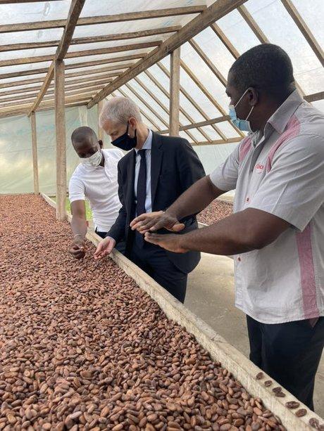 Cacao cote d'ivoire Franck Riester