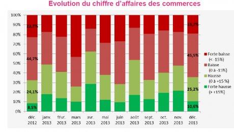 Statistique commerce Lyon 2013