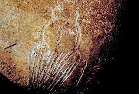 Grotte Chauvet 6