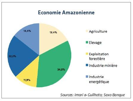 Economie Amazonienne