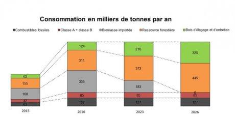 Approvisionnement bois d'E.On sur 20 ans