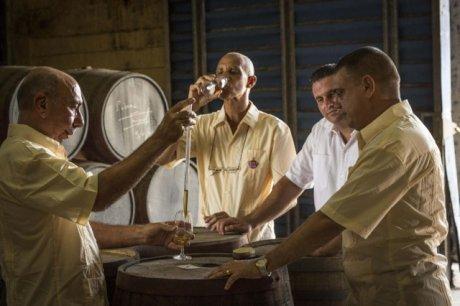 Havana Maestros roneros dans les chais