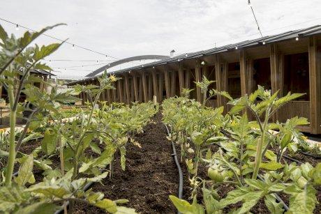 Le pavillon de Slow Food à l'Expo 2015