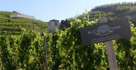 Chapoutier vin Ardèche