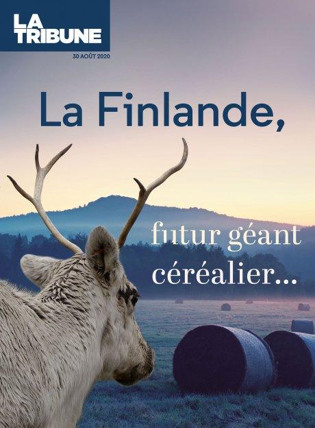 Une - Culture du blé, Finlande