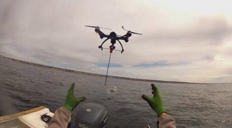 Préservation baleine par drone