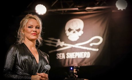 Pamela Anderson Sea Shepherd France