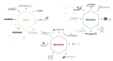 SG startup IPO