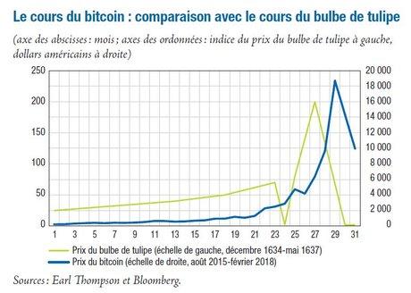 Comparaison bitcoin Tulipe Banque de France
