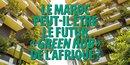 PP : le Maroc green hub de l'Afrique