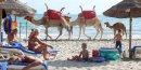 La tunisie voit un rebond de 30% du tourisme cette annee