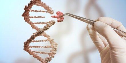 médecine, cancer, ADN