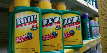 Nouvelles plaintes contre l'utilisation du glyphosate