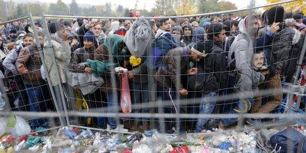 Des migrants et réfugiés essaient de traverser la frontière entre l'Autriche et la Slovénie à Spielfeld