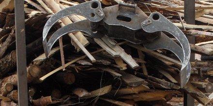 biomasse, bois, forêt, centrale thermique, chaleur, transition énergétique, particules fines, dioxine, CO2, pollution,
