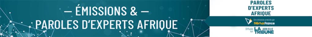 Bannière Paroles d'Expert Afrique Média France