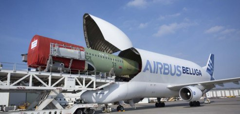Beluga Airbus avion-cargo