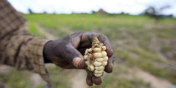 Face à la menace d'une insécurité alimentaire, le gouvernement a mis en place un Plan révisé de réponse et de soutien aux personnes vulnérables à l'insécurité alimentaire et à la malnutrition (PRSPV) pour 2018.