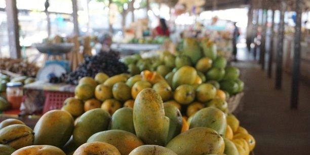 Le projet financé par l'agence de développement américaine USAID, veut générer 10,5 milliards de FCFA d'investissements dans le secteur de la mangue.