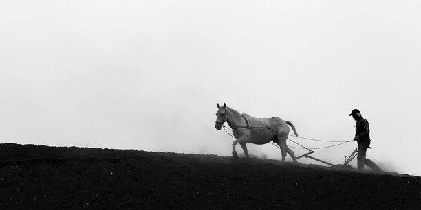 La charrue a mis fin au nomadisme des chasseurs-cueilleurs au profit la sédentarité agricole. Elle a ouvert une ère de prospérité, un cinquième de la population pouvant nourrir les quatre autres cinquièmes. Cela a libéré du temps pour développer de nouvelles activités, par exemple l'écriture, les droits de la propriété, l'engrais...
