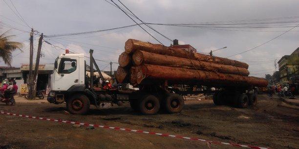 Au Cameroun, l'exploitation de certains produits forestiers dits «spéciaux», tels l'ébène et les rotins, est soumise à un avis préalable d'une commission inter-ministérielle.