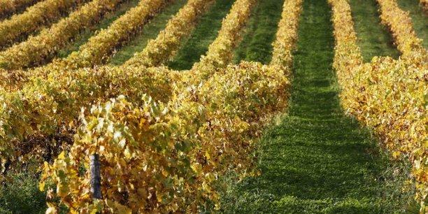 Le vin australien de pernod ricard bloque dans les ports chinois[reuters.com]