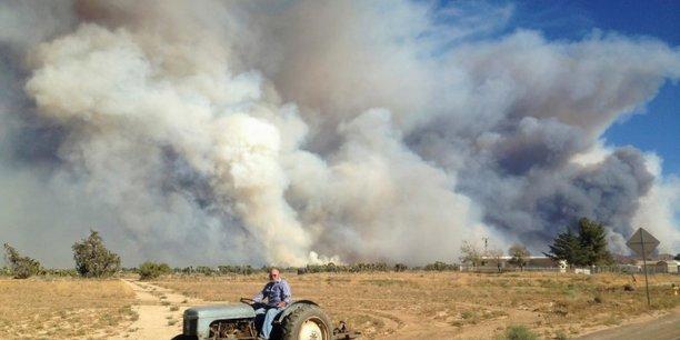 Les feux de foret entrainent une deforestation quasi-record en 2017 selon une enquete[reuters.com]
