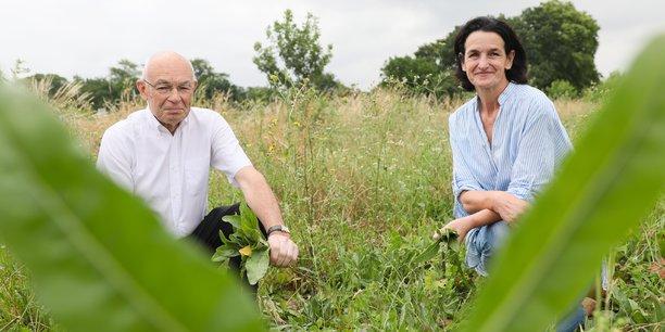 Jean-Jacques Germain et Sandrine Banessy ont fondé ensemble en 2013 Terre de Pastel, à Toulouse.