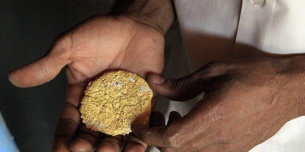 L'exploitation minière de la région des cascades au Burkina Faso s'étale sur quatre gisements pour une superficie totale d'environ 89 km², selon le président directeur général (PDG) de la mine, Richard Young.