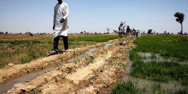 Nigeria: le conflit fermiers-bergers fait des milliers de deplaces[reuters.com]