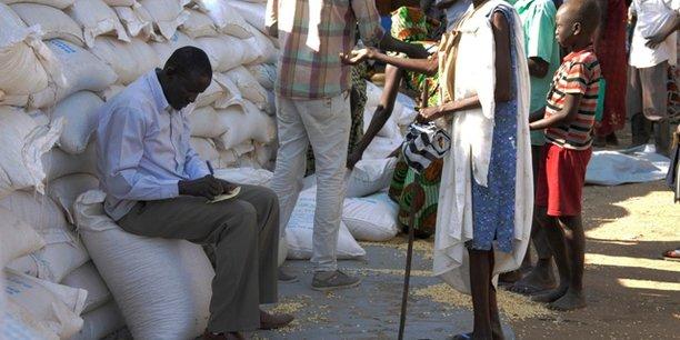 Environ 11,8 millions de personnes identifiées dans huit pays de la région du Sahel ont besoin d'une aide alimentaire immédiate.