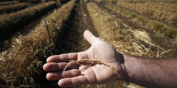Depot de bilan symbolique de fermiers bio en attente d'aides[reuters.com]