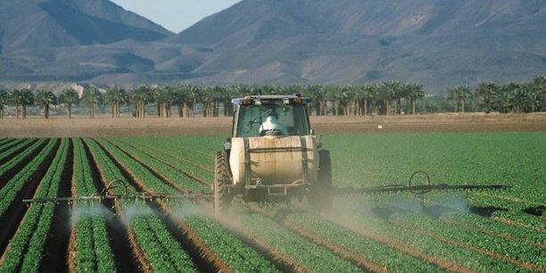 Phatisa a investi à ce jour 213 millions de dollars dans des sociétés africaines et représentant une production alimentaire de plus de 2,6 millions de tonnes.