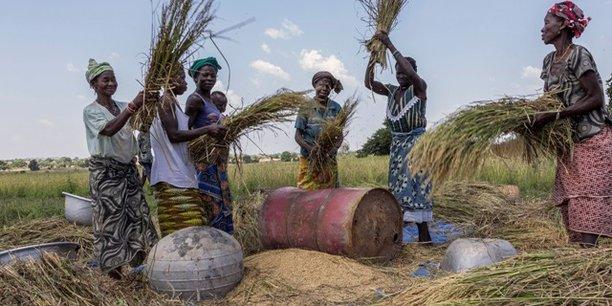 Au Burkina Faso, les fonds de la Société internationale islamique de financement du commerce (ITFC) seront mobilisés au financement des opérations d'exportation de produits agricoles tels que le coton et d'importation d'intrants et de produits alimentaires.