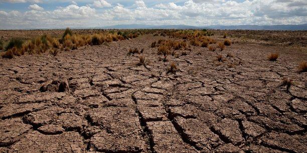 L'objectif des ONG est d'engager de plus en plus de personnes dans la mobilisation contre la crise climatique, ainsi que de suggérer par l'exemple d'autres formes d'actions.