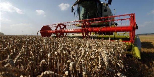 La croissance sur un an des exportations en 2013 a découlé largement des céréales, surtout orge et blé, avec un bond des exportations vers le Moyen-Orient et l'Afrique du nord, explique Bruxelles. (Photo : Reuters)