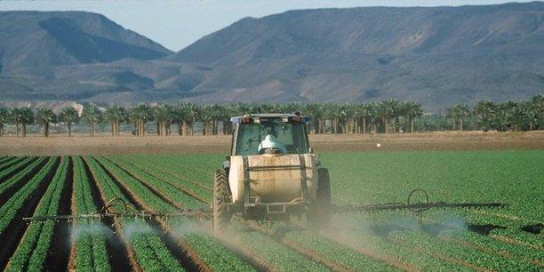 Agriculture : à Sacramento, des accords signés autour de la pomme de terre et du lait algériens