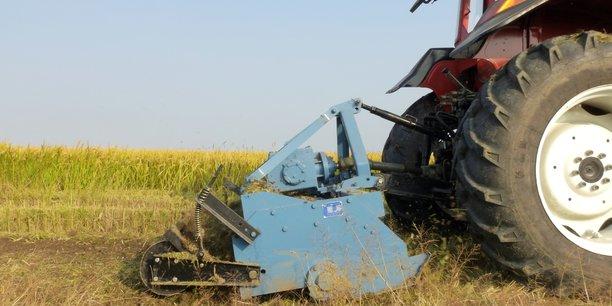 Les pratiques agricoles seront déterminantes dans l'atteinte de la neutralité carbone