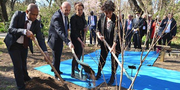 Lors du lancement de MAK'IT,  Philippe Augé (président de l'Université de Montpellier) et Louise Fresco (présidente de l'université de Wageningen) ont planté l'arbre symbole de l'amitié entre les deux universités, aux côtés de Abdoulaye Yéro Baldé (ministre de la République de Guinée) et de Frédérique Vidal (ministre de l'enseignement supérieur et de la recherche).