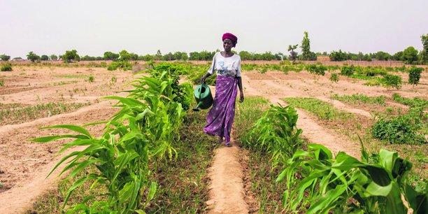 Selon l'ONU, le temps passé à chaque jour dans le monde par les femmes et les filles à collecter de l'eau s'élève à 200 millions d'heures.
