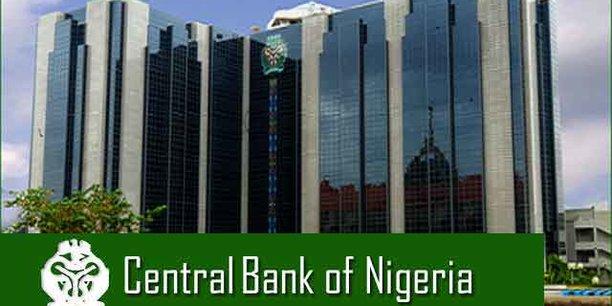 La stratégie nigériane consiste à utiliser des emprunts externes à long terme obtenus à un taux relativement avantageux pour atteindre les objectifs escomptés en 2019.