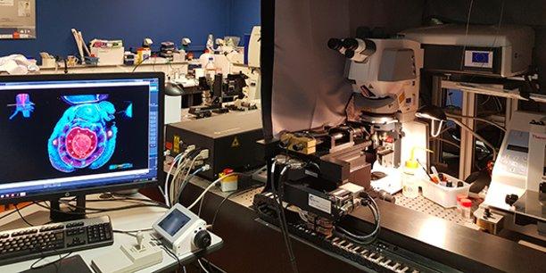 La plateforme d'imagerie cellulaire végétale du CIRAD, à Montpellier.