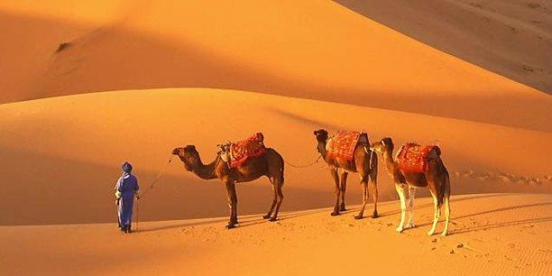 Tourisme : en une année, la Mauritanie a accueilli 4.000 touristes étrangers