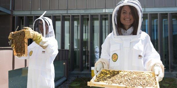 Olivier Fernandez, président du Syndicat Apiculteurs Midi-Pyrénées et la directrice du Min Maguelone Pontier inaugurent le nouveau pavillon du miel.