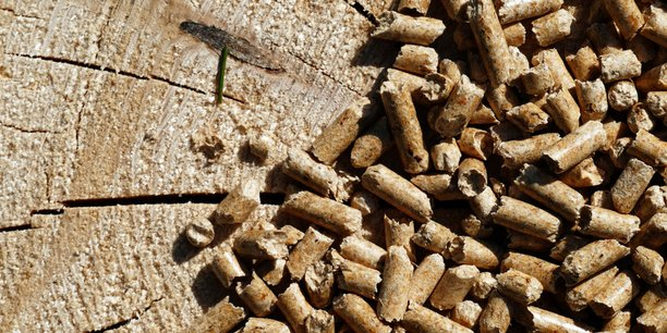 Une chaufferie biomasse va être construite d'ici à la fin de l'année sur la zone industrielle du Menneton.
