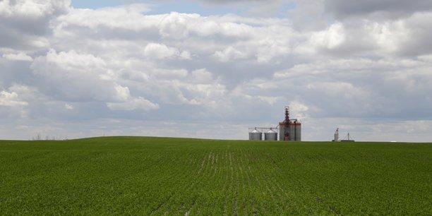 La disparition de nombreuses exploitations agricoles familiales en Occitanie est l'une des principales causes du dépeuplement de certains bassins de vie.