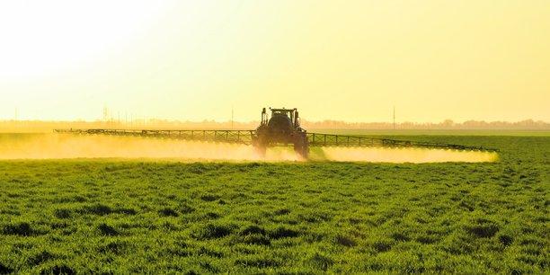 Aux µEtats-Unis, le glyphosate de Bayer-Monsanto est visé par plus de 13.000 plaintes, une quarantaine d'ONG européennes réclament son interdiction, et la France voudrait s'en passer d'ici trois ans.