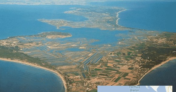 L'Ile de Ré / Wikipédia
