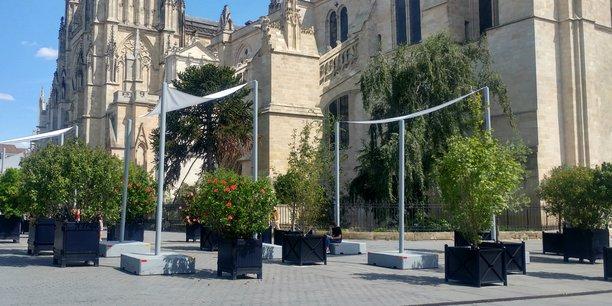 Les arbres en pot déployés par la mairie place Pey-berland, à Bordeaux, sont plus symboliques qu'efficaces.